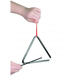 8029 Triangl