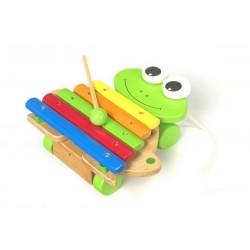 13761 Xylofon žába