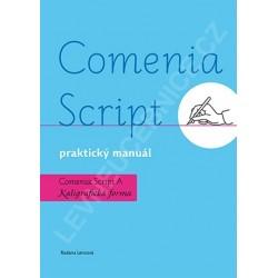 13853 Comenia script - P. manuál, Kaligrafická forma