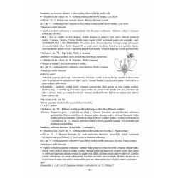 14112 Der grüne Max 1 Neu - CD zum Lehrbuch (CD k učebnici)