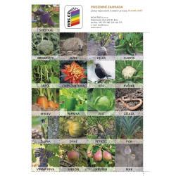 0275P3 Pexeso Podzimní zahrada (Já a můj svět 2)