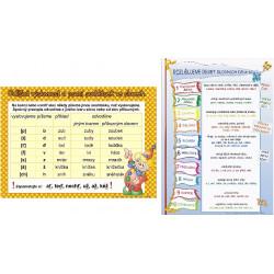 154203 Studio 1+1 - Odlišná výslovnost a psaní souhlásek/+ Rozlišujeme 10 slovních druhů (karta)